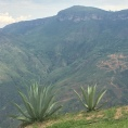 Chicamocha Views 2